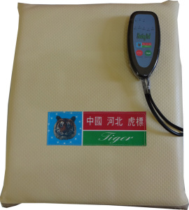 Heat Therapy Cushion With Remote Control