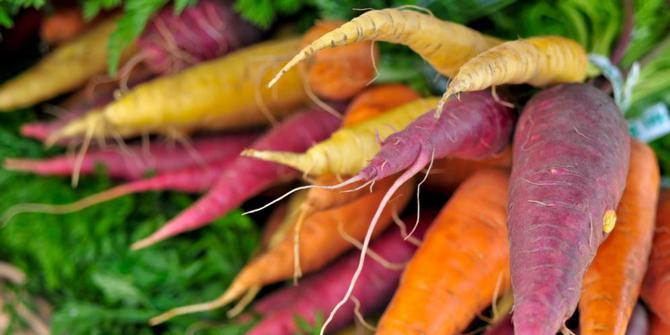 yuk-makan-ini-wortel-warna-warni-yang-penuh-gizi