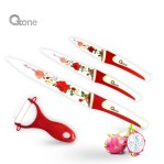 Flower knife set ox 607